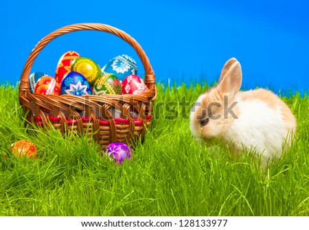Easter basket with egg and baby bunny on grass - stock photo