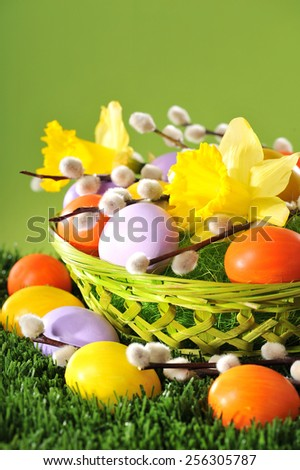 Easter basket with eggs, narcissus and catkin on lawn - stock photo