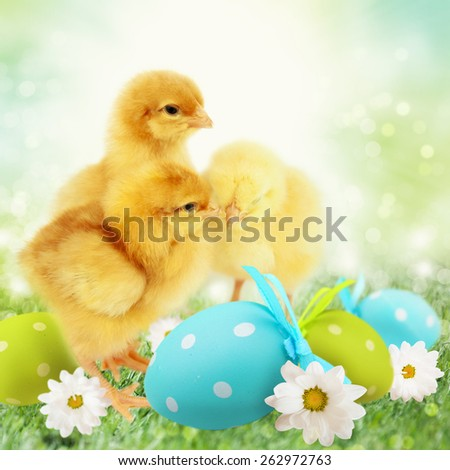 Easter chickens with colorful Easter egg, - stock photo