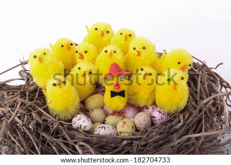 Easter chicks decorations on nest - stock photo