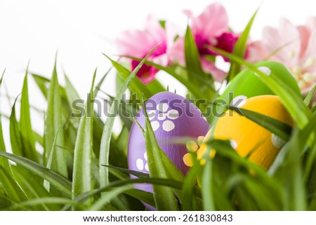 Easter colored eggs on the green grass. studio shot - stock photo
