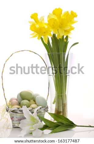 Easter Daffodils - stock photo