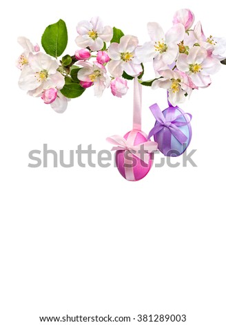 Easter decoration. Apple blossom and Easter eggs on a white background with space for text. - stock photo
