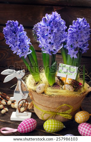 easter decoration with fresh hyacinth flowers in pot on wooden background - stock photo