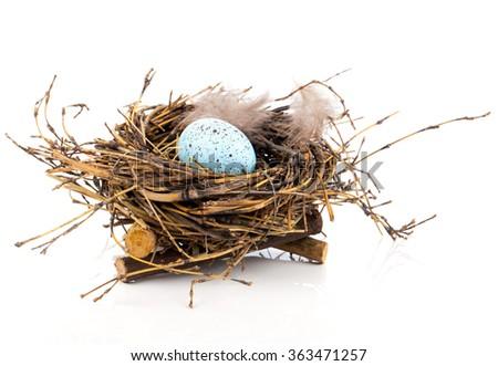 Easter egg in birds nest isolated on white background - stock photo