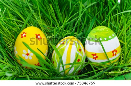 Easter eggs are colored in green grass - stock photo