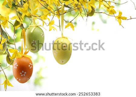 Easter eggs hanging on forsythia branches - stock photo