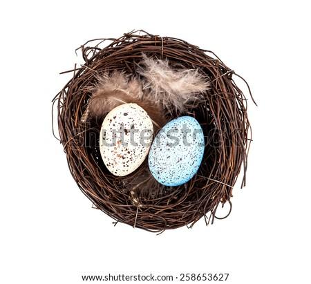 Easter eggs in birds nest isolated on white background - stock photo