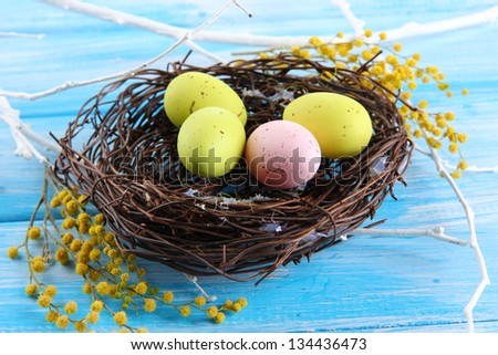 Easter eggs in nest and mimosa flowers, on blue wooden background - stock photo