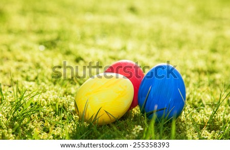 Easter eggs lying on meadow - stock photo