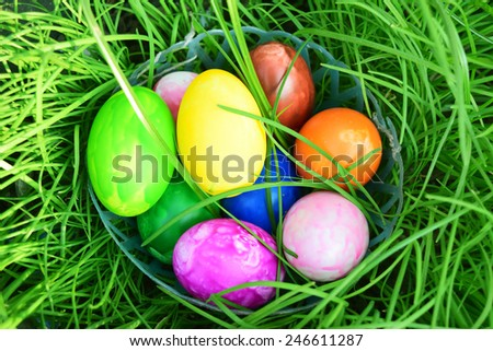 Easter Eggs with Fresh Green Grass over white background - stock photo