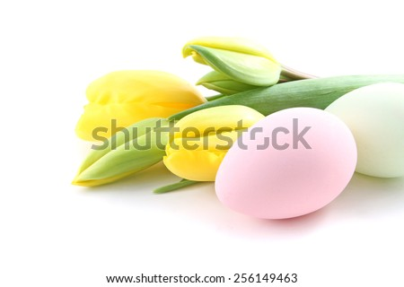 Easter eggs with tulip flowers isolated over a white background - stock photo