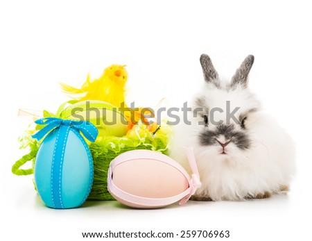 Easter pictures - rabbit  with colored eggs - stock photo
