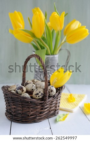 Easter quail eggs in the basket and yellow tulips on painted background - stock photo