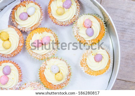 Easter Style Cupcakes in a tin - stock photo