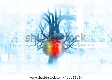 ECG background with human heart - stock photo