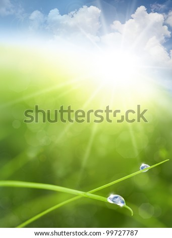Eco background with Sky, Grass, Water Drops and Cloud reflections into Raindrops - stock photo