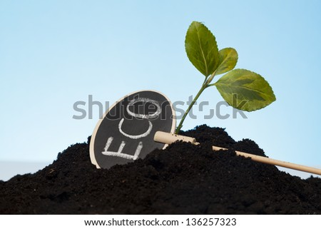 eco concept with little plant and soil - stock photo