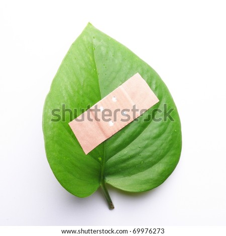 eco ecology ecological nature or environmental concept with green leaf and band aid on white - stock photo