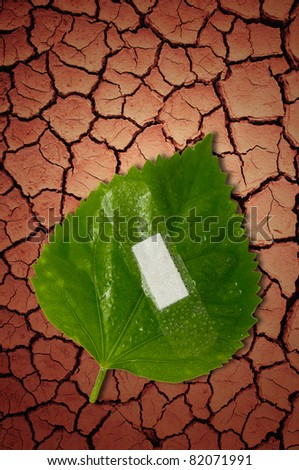 eco ecology or nature protection concept with leaf and bandage on dry soil arid areas background - stock photo