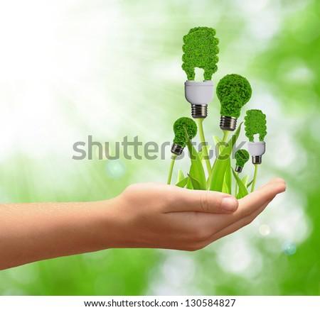 eco energy bulb in hand - stock photo