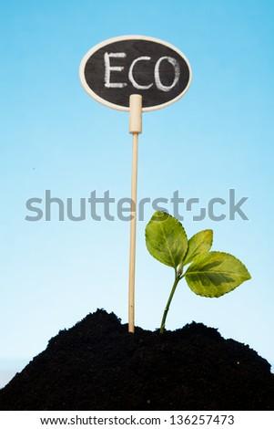 eco farm concept - stock photo
