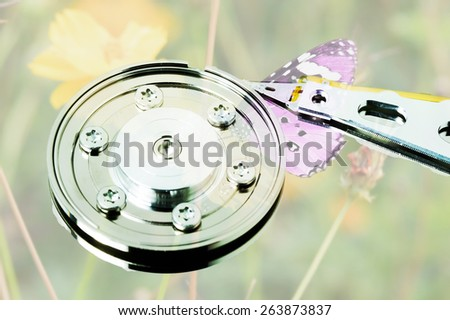 eco harddrive symbolic picture for Green IT - stock photo
