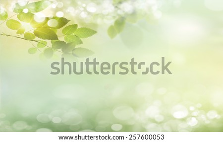 Eco nature green and blue abstract defocused background with sunshine - stock photo