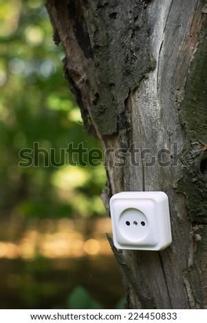 ecological concept, symbolizing renewable energy, bio energy - stock photo