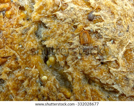 Ecological wheat and rye bread texture - stock photo