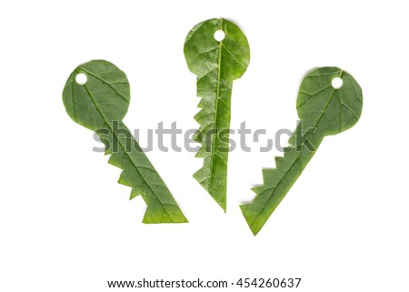 Ecology concept. Key to eco solutions. Keys made of green leaf. - stock photo