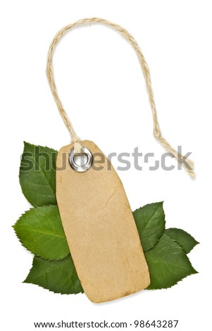 Ecology fresh label price on white background with leaves and string - stock photo
