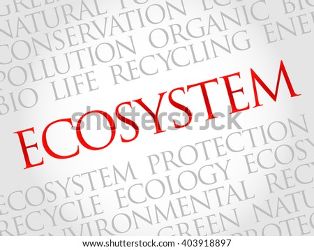 Ecosystem word cloud, environmental concept - stock photo