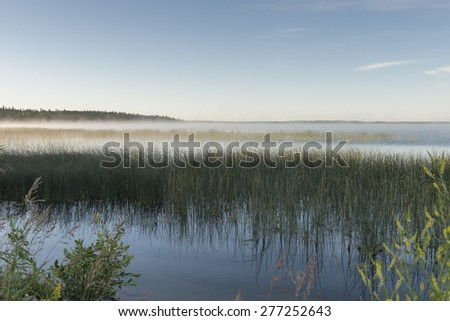 Edge of Marshland, Riding Mountain National Park, Manitoba, Canada - stock photo