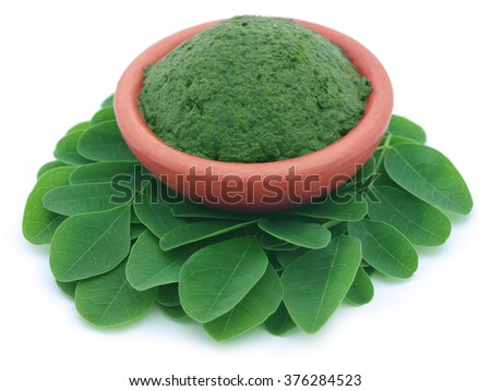 Edible moringa leaves with mashed ones - stock photo