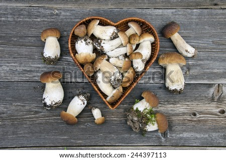 edible mushroom fungi boletus in heart form basket on old wooden table - stock photo