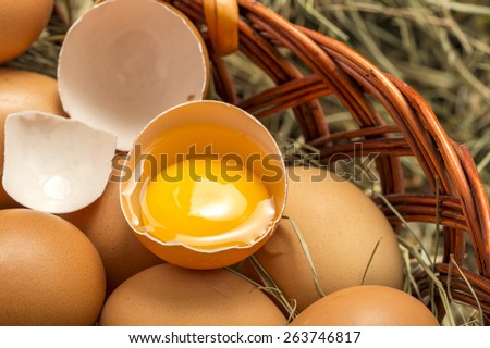 eegg yolk in a basket with chicken eggs closeup - stock photo