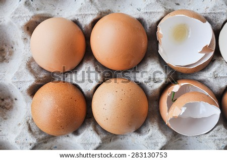 Egg, Chicken Egg - stock photo