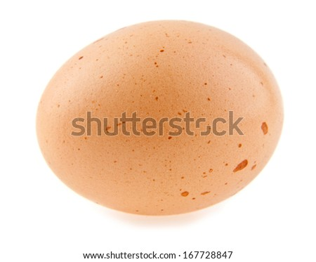 egg is isolated on white background - stock photo