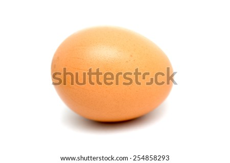 egg on a white background - stock photo