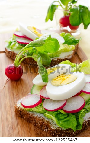 Egg sandwich on wooden table with redishes - stock photo