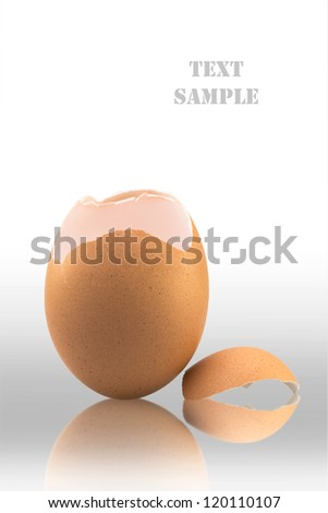 Egg shell isolated on white background (with clipping path) - stock photo