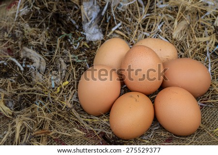 Eggs from the farm's - stock photo