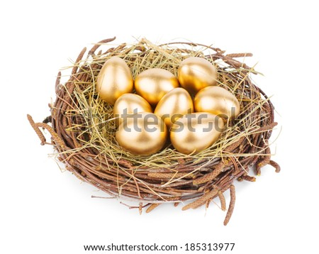 Eggs in nest isolated on white background - stock photo