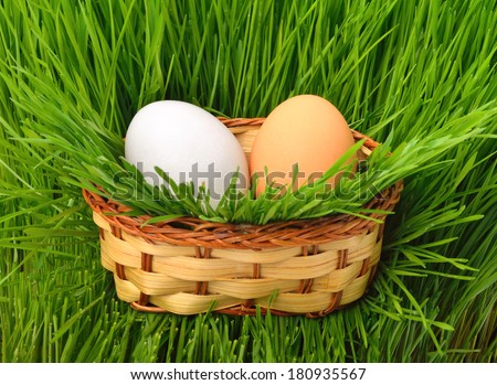 Eggs in the basket on the green grass - stock photo