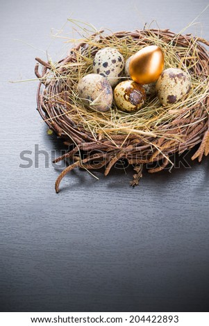 Eggs with one gold in nest with copyspace - stock photo