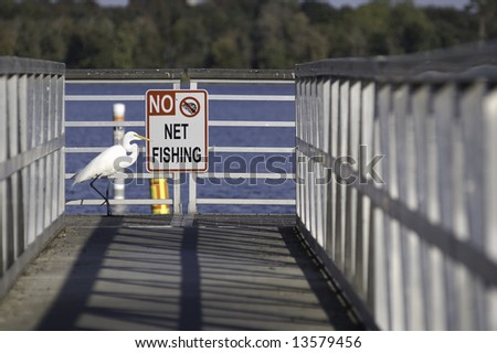 Egret and No Net Fishing sign - stock photo