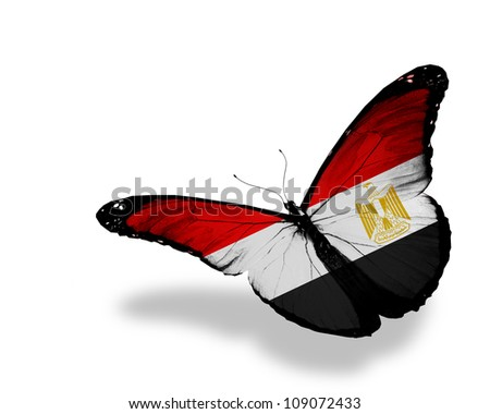 Egyptian flag butterfly flying, isolated on white background - stock photo