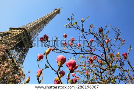 Eiffel Tower in spring time, Paris, France. - stock photo