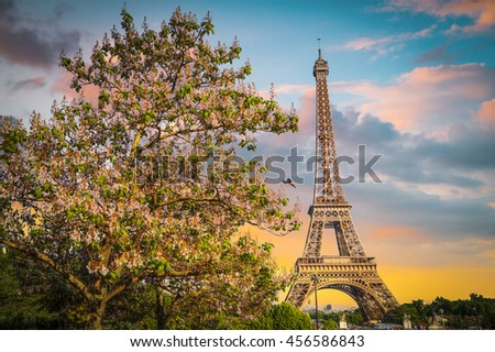 Eiffel Tower in the evening, Paris, France - stock photo